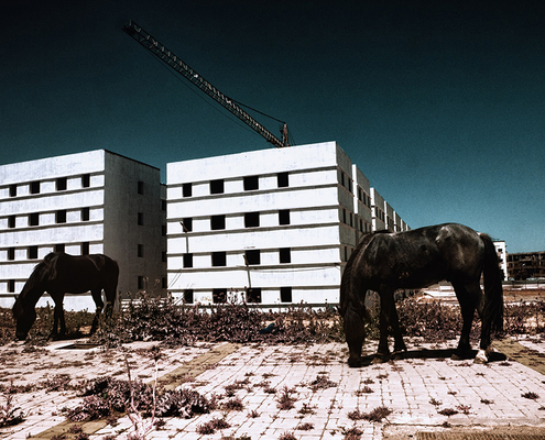 Zakaria Wakrim - Annexes - Photographie - Photography - Art - Chevaux - Immeubles - HLM - Construction